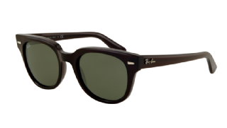 Ray-Ban Meteor Black/ Green