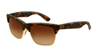 Ray-Ban Dylan 4186 Rubber havana/ arista/ Gradient brown