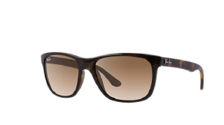 Ray-Ban 4181 Tortoise/ Light Brown Gradient