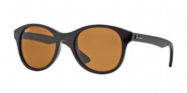 Ray-Ban 4203 Brown/ Brown classis G-15